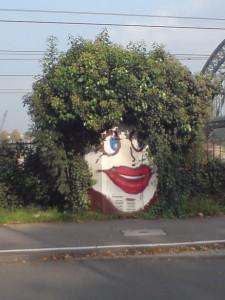 5702-lockengelot-kopf-streetart-blatter-graffiti-locken-bla